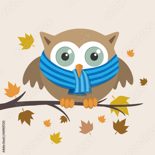 Fotobehang Uilen cartoon Male owl with scarf on a fall day