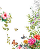 watercolor painting of leaves and flower,Butterfly on white background - 169818729