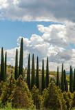 Paesaggio panoramico della Toscana