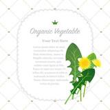 Colorful watercolor texture nature organic fruit memo frame dandelion leaf