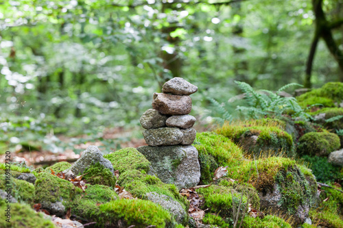 Foto op Canvas Zen A stack of balanced stones in the forest, Limousin, France
