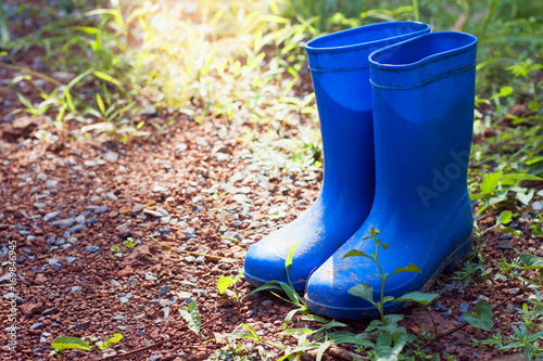 Gardening Boots on Lawn Poster