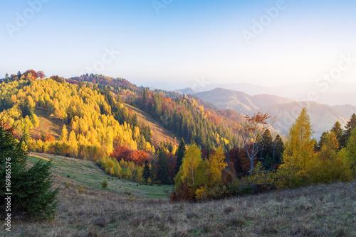 Papiers peints Automne Autumn landscape with forest on the slopes