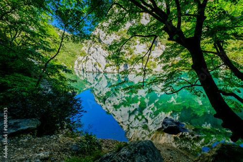 Papiers peints Rivière de la forêt Gorges du Verdon, Provence, France. Un beau reflet dans la rivière des arbres et des rochers.