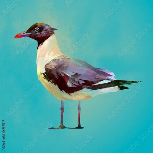 Painted color seated seagull bird - 169871519
