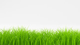 Grass abstract background. 3d illustration, 3d rendering.