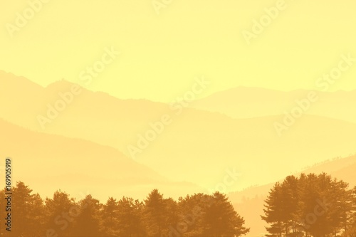 Fotobehang Zwavel geel Pine trees with layer of mountains in misty morning, Bhutan