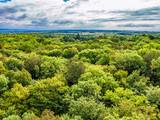 Primeval Beech Forests of Hainich National Park, Germany - 169916939