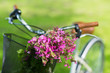 close up of fixie bicycle with flowers in basket - 169948510