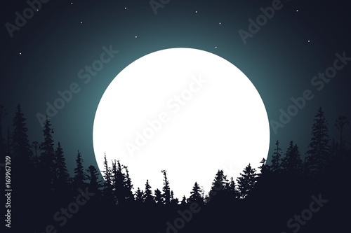 Fototapeta forest night moon