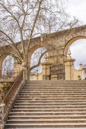 Botanical Garden, Coimbra, Portugal плакат