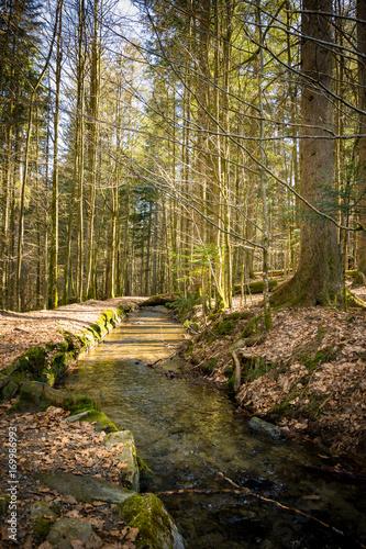 Papiers peints Route dans la forêt Bachlauf im Wald