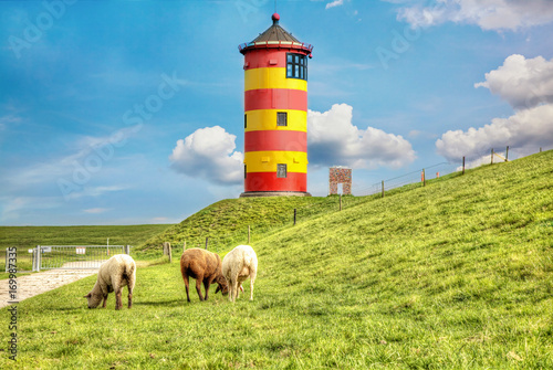 Leinwanddruck Bild Sheep in front of the Pilsum lighthouse on the North Sea coast of Germany.