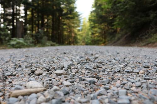 Papiers peints Rivière de la forêt Road in the forest