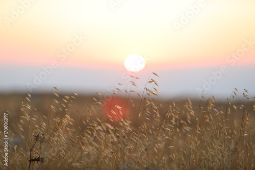 Fotobehang Beige sunset