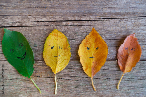 Four colorful autumn leaves with different emotions - happy,  glad, indifferent, sad on the wooden background Poster