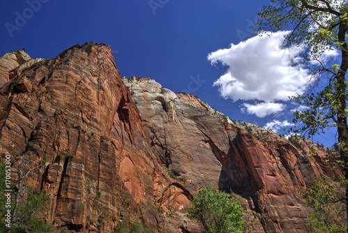 Fotobehang Diepbruine Clouds Above the Zion Canyon Walls