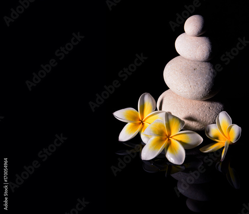 Fotobehang Plumeria Zen stone pyramid with three white gentle frangapani plumeria flowers after rain on the black reflective background. Low key2