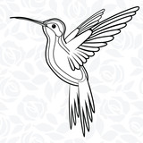 Colibri or Hummingbirds for logo, icon, t-shirt, mascot, poster vector illustration for t-shirt. Sketch tattoo design. - 170075980