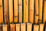 Korea bamboo