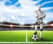 robot with soccer ball