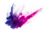 Fototapety abstract multicolored powder splatted on white background,Freeze motion of color powder exploding