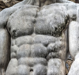 Detail of chest of Hercules statue - 170116503