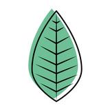 leaf icon over white background vector illustration - 170123767