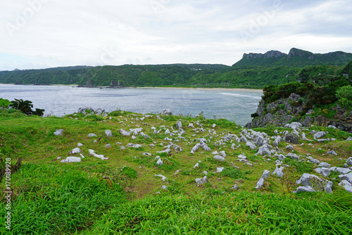 Foto op Plexiglas Groene Landscape view of Cape Hedo, the northernmost point on Okinawa Island, Japan