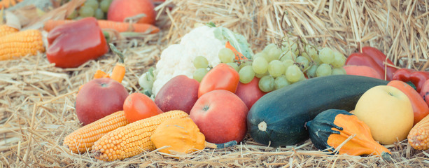 Vintage photo, Fruit and vegetables on straw, agriculture on summer or autumn