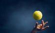 Big tennis concept