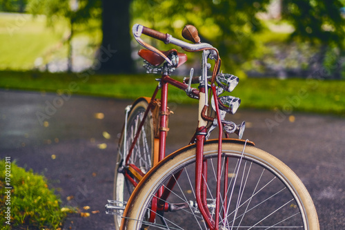 Aluminium Fiets Retro bicycle in a park.