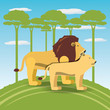 tiger and lion icon over africa jungles landscape colorful design vector illustration
