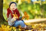 Cute little girl having fun on beautiful autumn day. Happy child playing in autumn park. Kid gathering yellow fall foliage. - 170279779