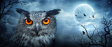 Angry Eagle Owl At Moonlight In The Spooky Forest - Halloween Scene - 170285338