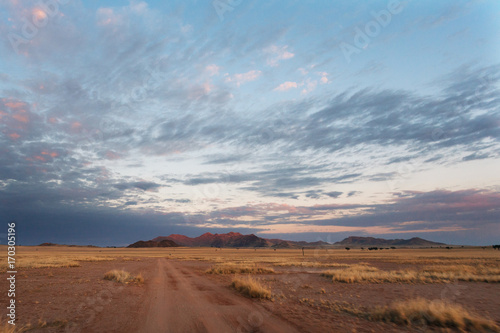 Staande foto Diepbruine Namibia desert , Veld , Namib