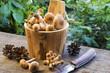 mushrooms in wooden barrel
