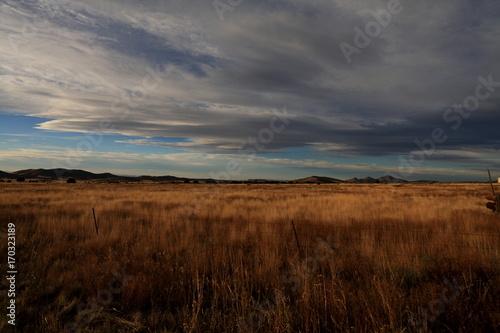 Keuken foto achterwand Donkergrijs fall landscape