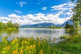 Panorama sul lago Forggensee