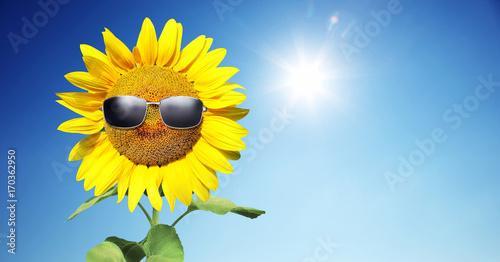 Fotobehang Natuur Sonnenblume mit Sonnenbrille