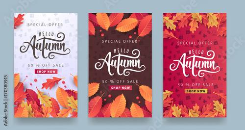 Jesieni sprzedaży tła układ dekoruje z liśćmi dla robić zakupy sprzedaż, promo plakata i ramy ulotki lub sieć sztandar. Wektorowy ilustracyjny szablon.