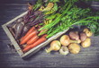 Autumn harvest. Fresh carrots, beet, onions, garlic and potatoes on a wooden background. Farmer products.