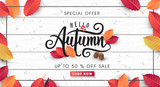 Autumn sale background layout decorate with leaves for shopping sale or promo poster and frame leaflet or web banner.Vector illustration template. - 170387195