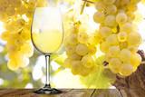 Weißwein mit Trauben