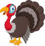 Cartoon turkey isolated on white background