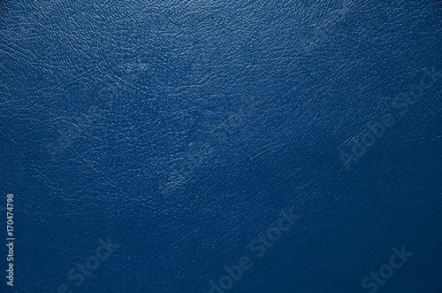 Plakat Blue skin texture
