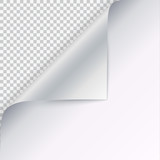Page curl with shadow on blank sheet of paper. Vector curled corner of white paper with shadow. Close-up isolated on transparent background. Paper sticker, 3D illustration - 170522196