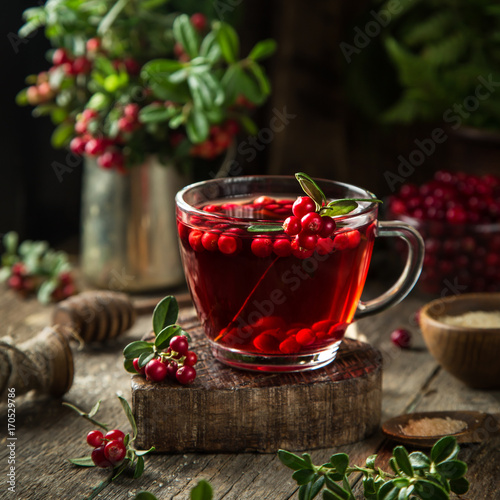 Poster cup of hot lingonberry (or cranberry) tea