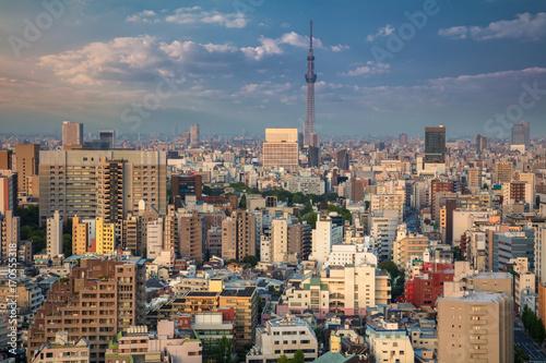 Fotobehang Tokio Tokyo. Cityscape image of Tokyo skyline during sunset in Japan.