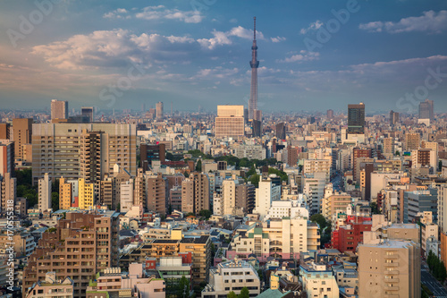 Tokyo. Cityscape image of Tokyo skyline during sunset in Japan. Poster